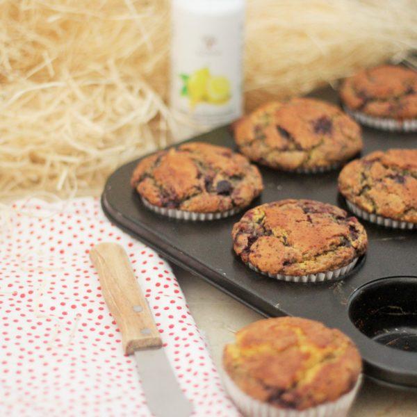 Heidelbeer und Hafer Muffins mit Olivenöl und Zitrone