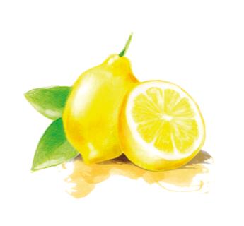 Zitrone Olivenöle