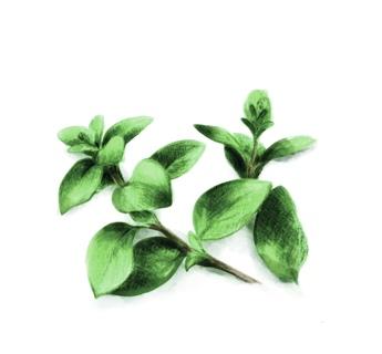 Aromatisiertes Olivenöle