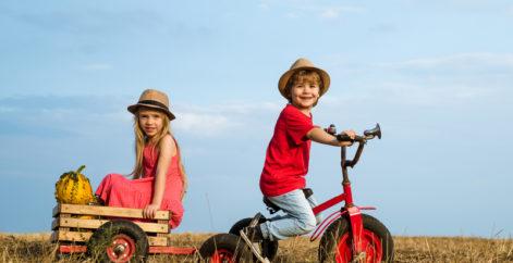 Familienfreundliche Sommer Aktivitäten auf dem Bauernhof